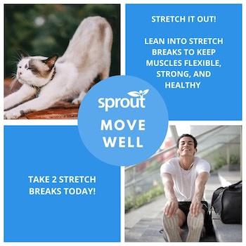6-Stretch-Break